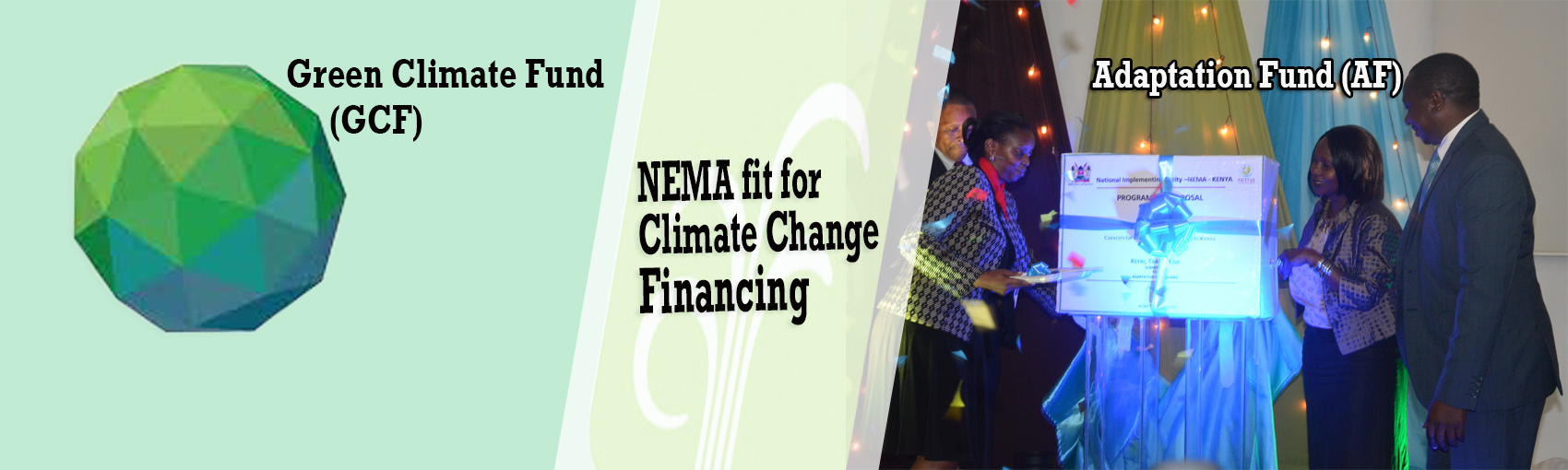 NEMA fit for Climate Change Financing