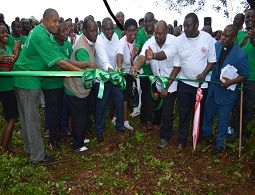 Church launches a tree-planting drive