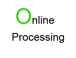 Online Processing of Summary Project Report