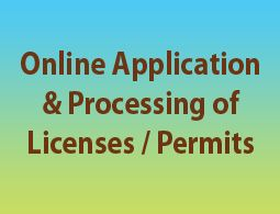 Online Application and Processing of Licenses